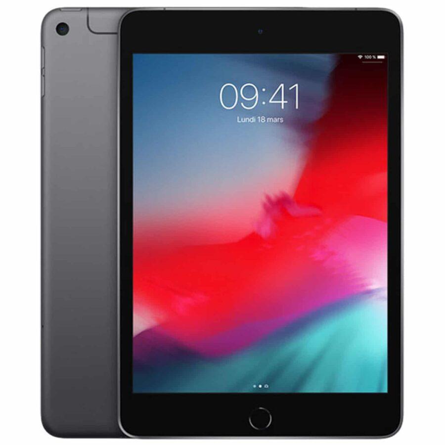 Apple iPad Mini 5 Wi-Fi + Cellular 256 Go - Gris Sidéral Neuf Garantie 1 an en Stock | McPrice Paris Trocadéro