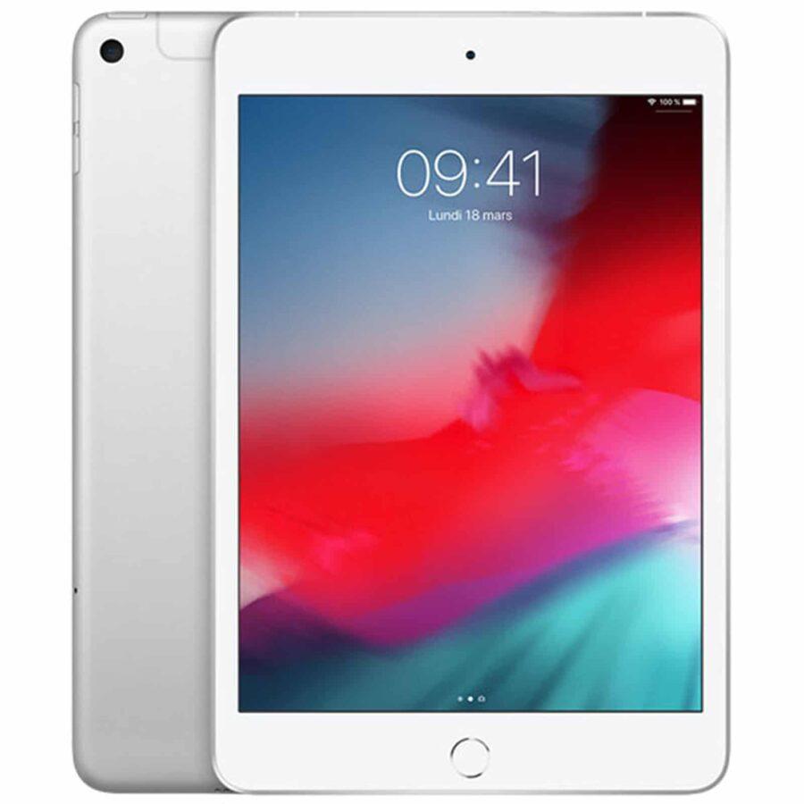 Apple iPad Mini 5 Wi-Fi + Cellular 64 Go - Argent - Neuf Garantie 1 an en Stock   Trocadéro Paris