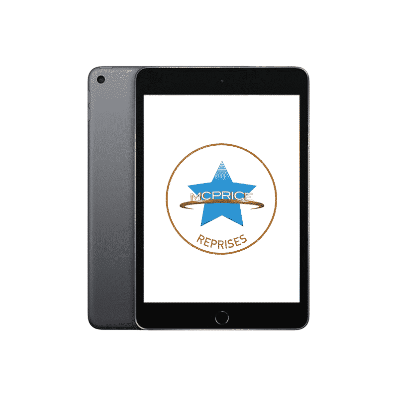 Reprise Apple iPad Mini 5 Wifi + Cellular 256 Go - Gris Sidéral | McPrice Paris Trocadéro